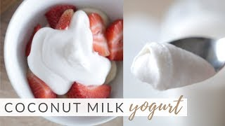 How to Make Homemade Coconut Yogurt | easy 2-ingredient recipe