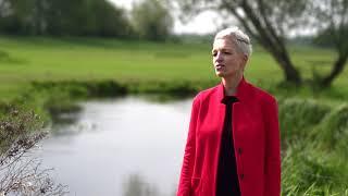 Willeke Simons - De Zjwaam
