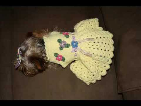 Small Dog Dress Patterns Free