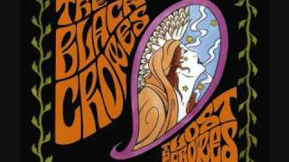 Watch Black Crowes Let Me Share The Ride video