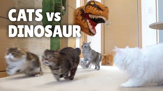 Cats vs Dinosaur