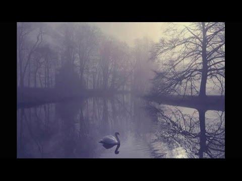 Arioso - Liona Boyd ( Bach )