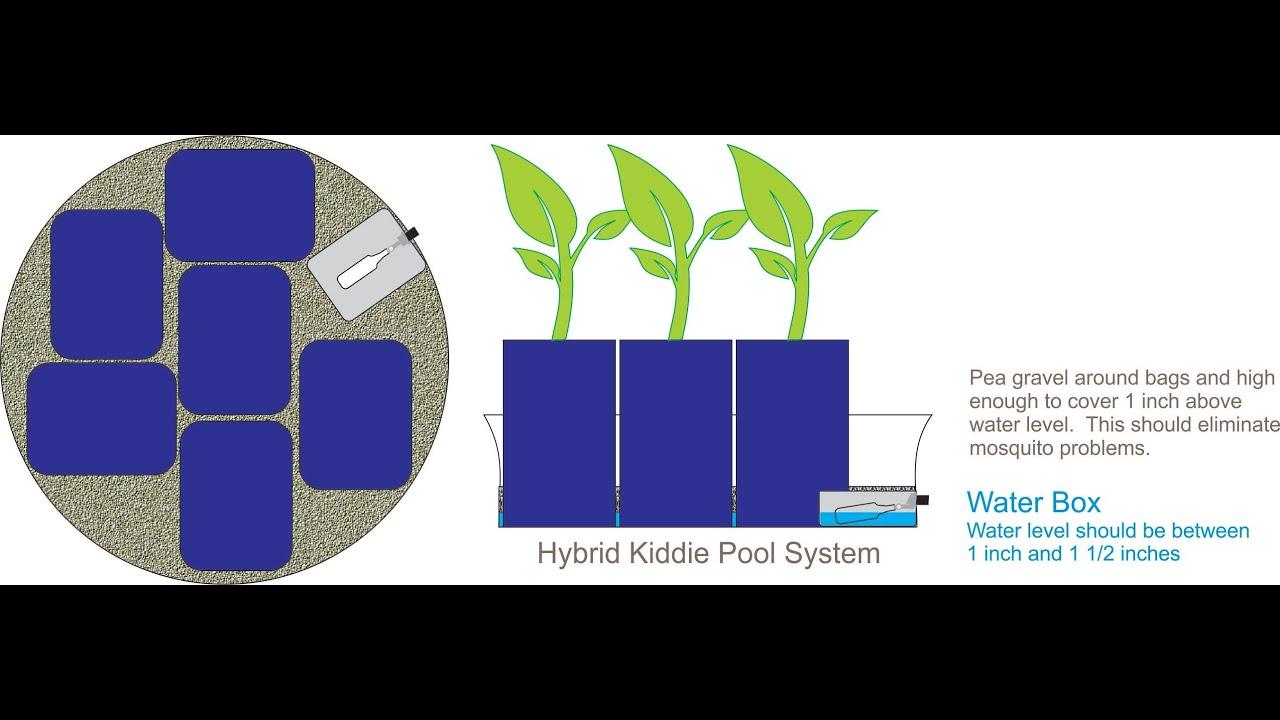 The New Amazing Self Watering Hybrid Kiddie Pool Grow