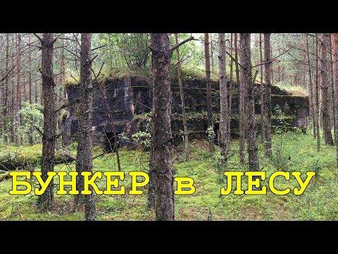 КОП по ПЕРВОЙ МИРОВОЙ. Нашли бункер в лесу и оборона мертвого города. Фильм 56.
