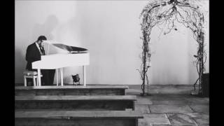 Starving Hailee Steinfeld By James Hey Piano