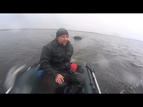 рыбалка в запорожье на карася