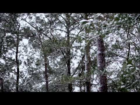 Aimee Mann - White Christmas