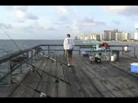 Anglins Fishing Pier Fort lauderdale Boatless Fishing August 2008