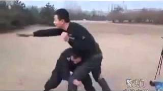 Tai jitsu and Chinese Police self defence