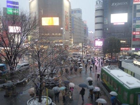 Heavy snow in Tokyo Feb 14, 2014 東京 大雪