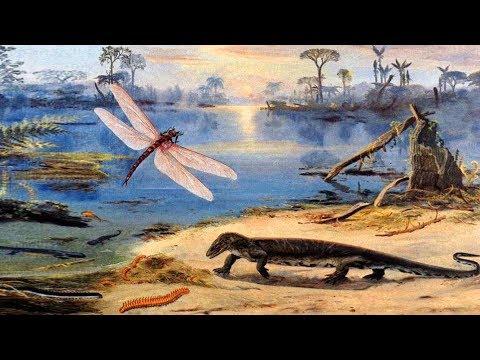 Каменноугольный период палеозойской эры (рассказывает палеонтолог Эрвин Лукшевич)