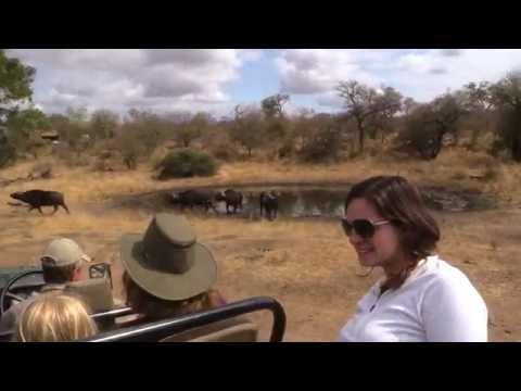 Big Five weekeend at nDzuti Safari Camp  -  August 2014