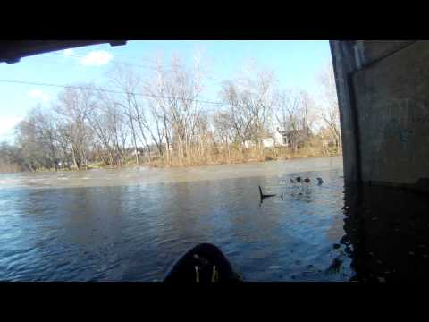 Elkhorn Creek Launch - 2011_11_17
