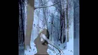 Watch Arcana Angel Of Sorrow video
