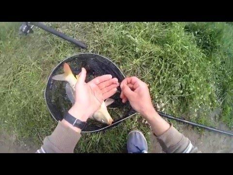 рыбалка на дону весной на донку видео