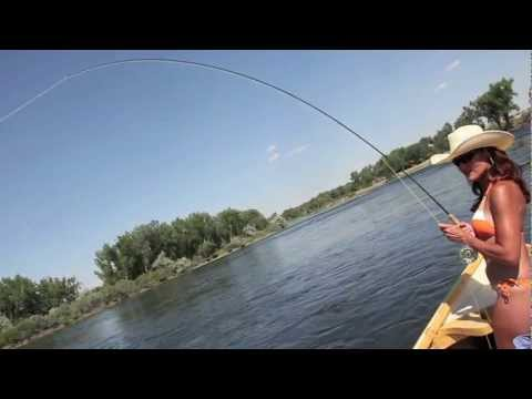 Bighorn river fishing videos for Bighorn river fly fishing