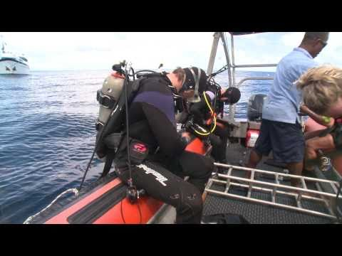 Scuba diving in Fiji. NAI'A trip highlights 05-12/02/11