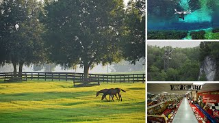 Explore Ocala - Marion County in 60 Seconds