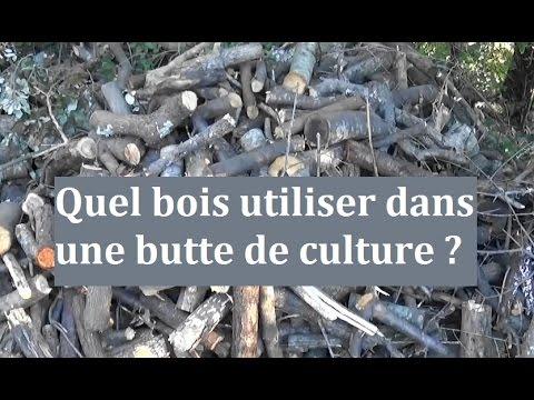 Quel bois utiliser dans une butte de culture permaculture agro cologie etc for Culture sur butte permaculture