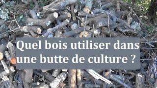 Quel bois utiliser dans une butte de culture ?