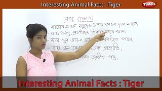 Interesting Animal Facts : Tiger | Tiger Essay in Bengali | Tiger Song | Tiger Story | Learn Animals
