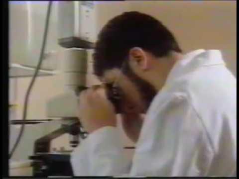 Les Nuls - Professeur Thibault - Composition d une crotte de nez