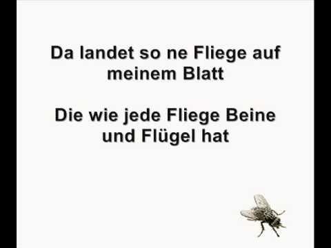 Götz Widmann - Die Fliege