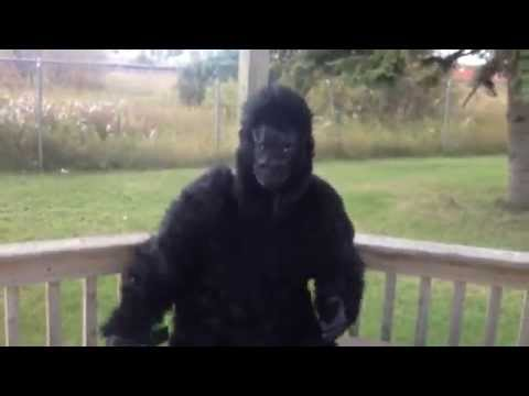 Sasquatch Attack in Tofield Alberta Oct 5, 2014