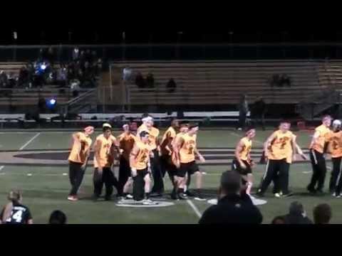 2014 Glenbard North High School Poms Security Halftime Performance