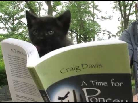 "Kittens read an excerpt from ""A Time for Poncey"""