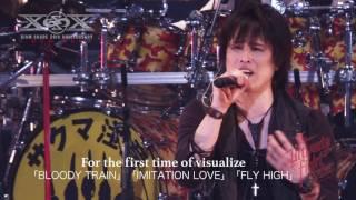 期間限定先行販売受付中! The Ultimate Fight Series- 「Live At Zepp Tokyo」DVD