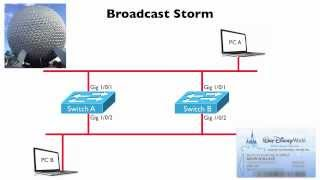 Broadcast Storm (CCNA Complete Video Course Sample)