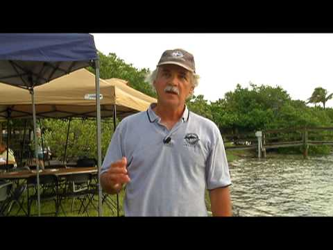 Sarasota County Be Floridian - Scallop Search 2013 by Mote Marine