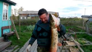 рыбалка в новое сельцо