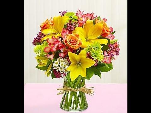 Flower Delivery Newark NJ|1-800-444-3569|Send Flowers Newark NJ|Florist Newark NJ