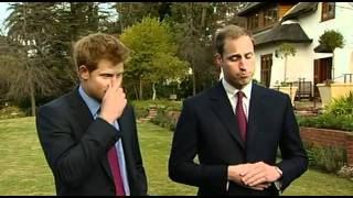 Prince William and Prince Harry interview on charity work in Africa
