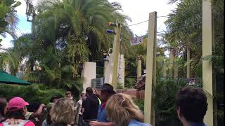 Universal Studios Dinosaur Cage attacking band kids