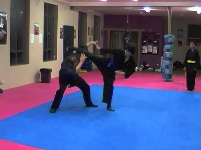 Shaolin Wu Xing Ba Fa Quan   Misc functions