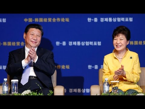 How Was China's Xi Jinping Welcomed in South Korea? (LinkAsia: July 11, 2014)