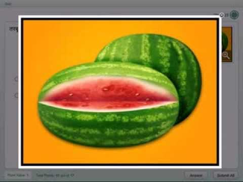 Toys Names in Hindi Different Fruits Name in Hindi