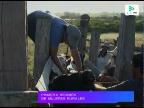 Historias de trabajadoras rurales uruguayas