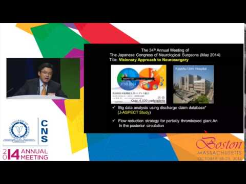 Comprehensive Stroke Care Capabilities in Japan: A Neurovascular Surgeon's Perspective