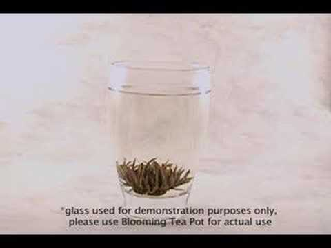 Blooming Tea Instructions
