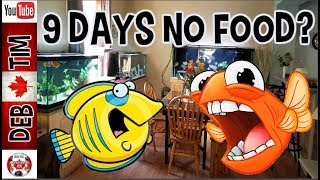 AQUARIUMS PREPPED FOR VACATION FISH FASTING FOR 9 DAYS