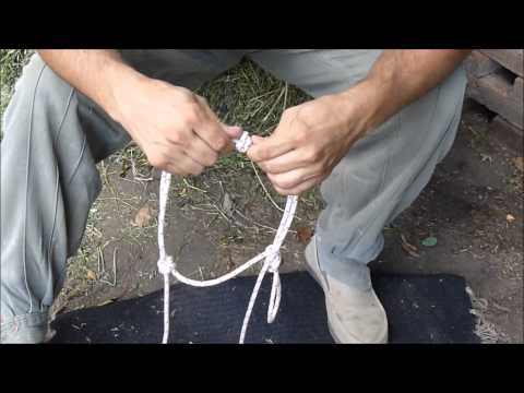 Jáquima, cabezal o bozal de cuerda- Rope Halter - Doma India Scarpati
