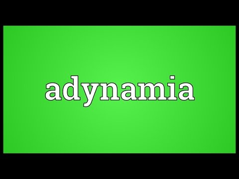 Header of adynamia