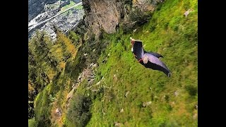 How to Tune Your Wingsuit