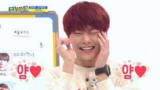 Baby Jeongin (I.N) Stray Kids cute and funny moments