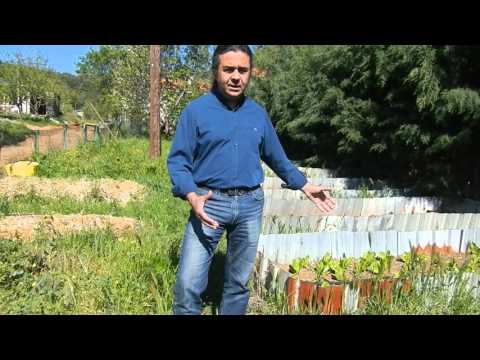 Permaculture approach of the host Marmariç from WWOOF Turkey - 'Raised Beds'