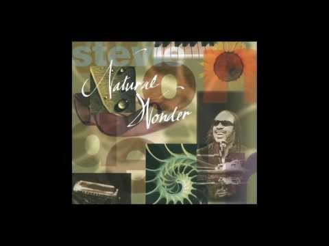 Stevie Wonder - Dancing to The Rhythm